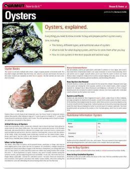 Oysters (Quamut)