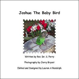 Joshua the Baby Bird
