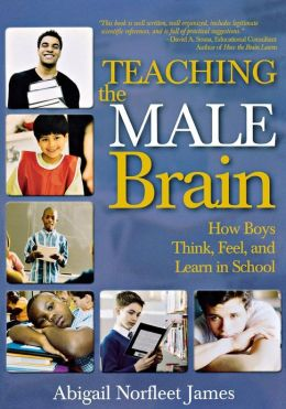 Teaching the Male Brain : How Boys Think, Feel, and Learn in School