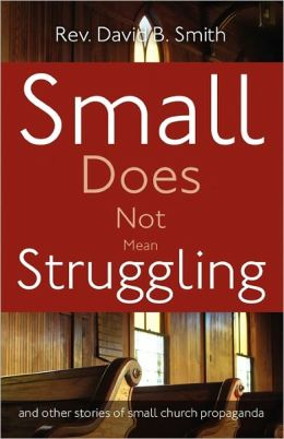 Small Does Not Mean Struggling