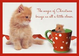 Cat & Mouse Friends Christmas Boxed Card