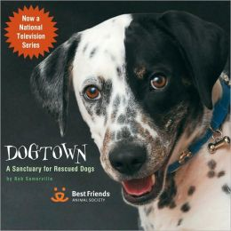 Dogtown: Where Canines Come First