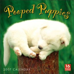 2007 Pooped Puppies Wall Calendar