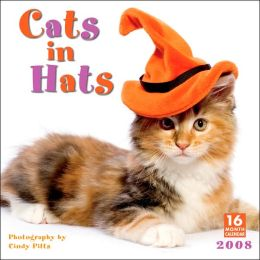 2008 Cats in Hats Wall Calendar