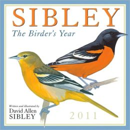 2011 Sibley: The Birders Year Wall Calendar