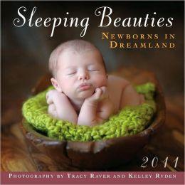 2011 Sleeping Beauties: Newborns In Dreamland Mini Wall Calendar