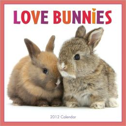 2012 Love Bunnies Wall Calendar