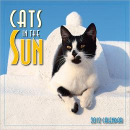 2012 Cats in the Sun Mini Wall Calendar