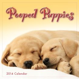 2014 Pooped Puppies Mini Wall Calendar