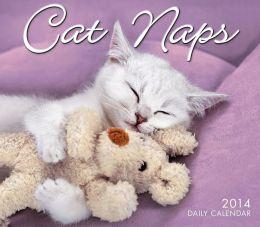 2014 Cat Naps Boxed Daily Calendar
