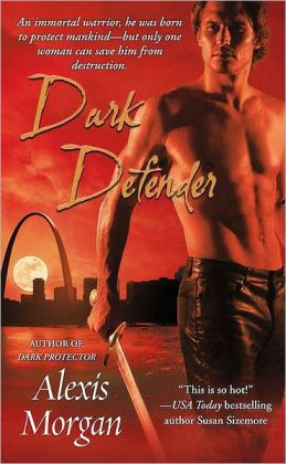 Dark Defender (Paladin Series #2)