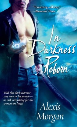 In Darkness Reborn (Paladin Series #3)
