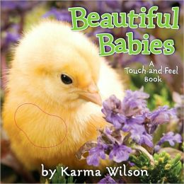 Beautiful Babies: A Touch-and-Feel Book