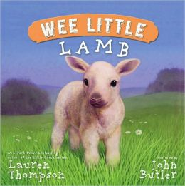 Wee Little Lamb (Wee Little Series)