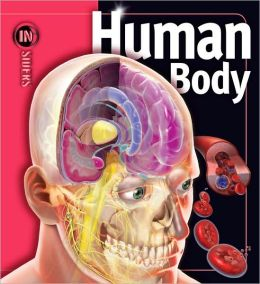 Human Body (Insiders Series)