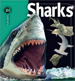 Sharks (Insiders Series)