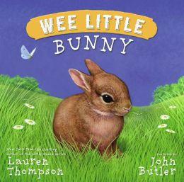 Wee Little Bunny
