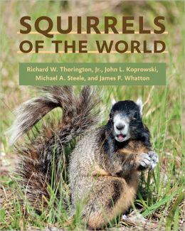 Squirrels of the World