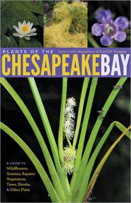 Plants of the Chesapeake Bay: A Guide to Wildflowers, Grasses, Aquatic Vegetation, Trees, Shrubs, and Other Flora