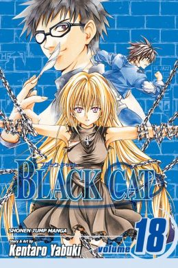 Black Cat, Volume 18