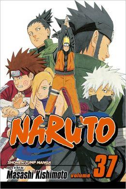 Naruto, Volume 37: Shikamaru's Battle