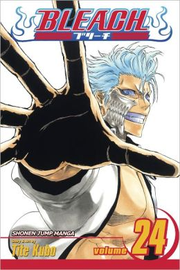 Bleach, Volume 24: Immanent God Blues