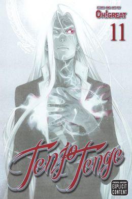 Tenjo Tenge, Vol. 11
