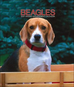 2007 Beagles Weekly Engagement Calendar