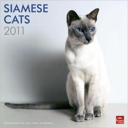 2011 Siamese Cats Square Wall Calendar