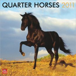 2011 Quarter Horses Square Wall Calendar