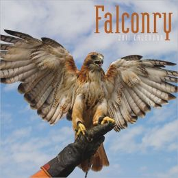 2011 Falconry Square Wall Calendar