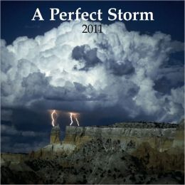 2011 A Perfect Storm PLATO Square Wall Calendar