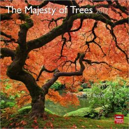 2012 Majesty Of Trees, The Square 12X12 Wall Calendar