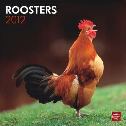 2012 Roosters Square 12X12 Wall Calendar