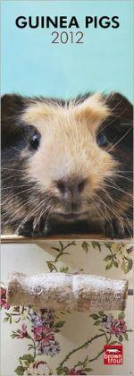 Guinea Pigs 2012 Slimline