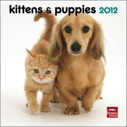2012 Kittens & Puppies 7X7 Mini Wall Calendar