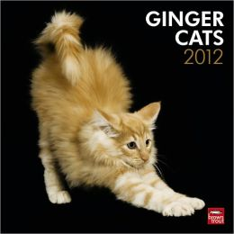 2012 Ginger Cats Square 12X12 Wall Calendar