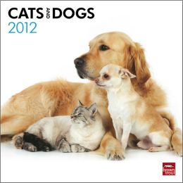 2012 Cats & Dogs Square 12X12 Wall Calendar