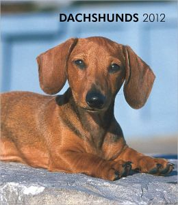 2012 Dachshunds Hardcover Weekly Engagement Calendar