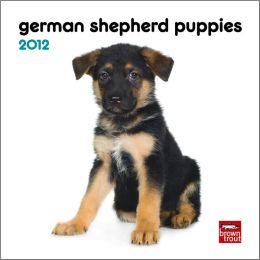 German Shepherd Puppies 2012 7X7 Mini Wall