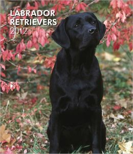 Labrador Retrievers 2012 Hardcover Weekly Engagement
