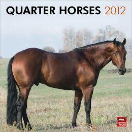 2012 Quarter Horses Square 12X12 Wall Calendar