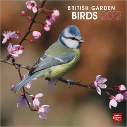 2012 British Garden Birds Square 12X12 Wall Calendar