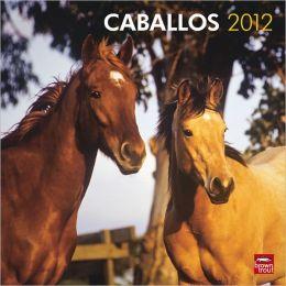 2012 Caballos/Horses Square 12X12 Wall Calendar