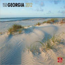 2012 Georgia, Wild & Scenic Square 12X12 Wall Calendar