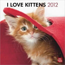 2012 Kittens, I Love Square 12X12 Wall Calendar