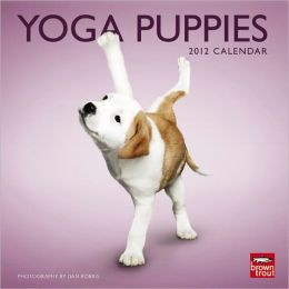 2012 Yoga Puppies Mini 7x7 Wall Calendar