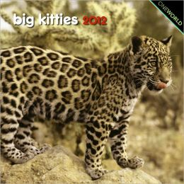 Big Kitties Mini 7X7 Calendar