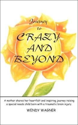 Journey to Crazy and Beyond: A mother shares her heartfelt and inspiring journey raising a special needs child born with traumatic brain Injury