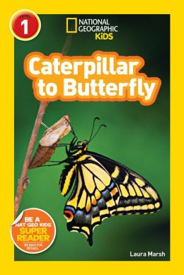 Caterpillar to Butterfly: National Geographic Readers Series (Enhanced Edition)